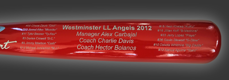 Team Trophy Bat