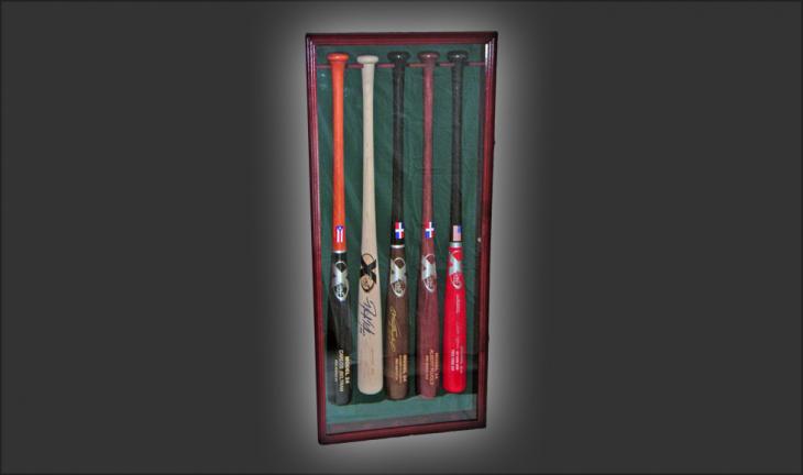 5 Bat Display Case