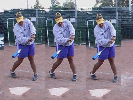 Training Softball Bats and Pro Stock Softball Bats